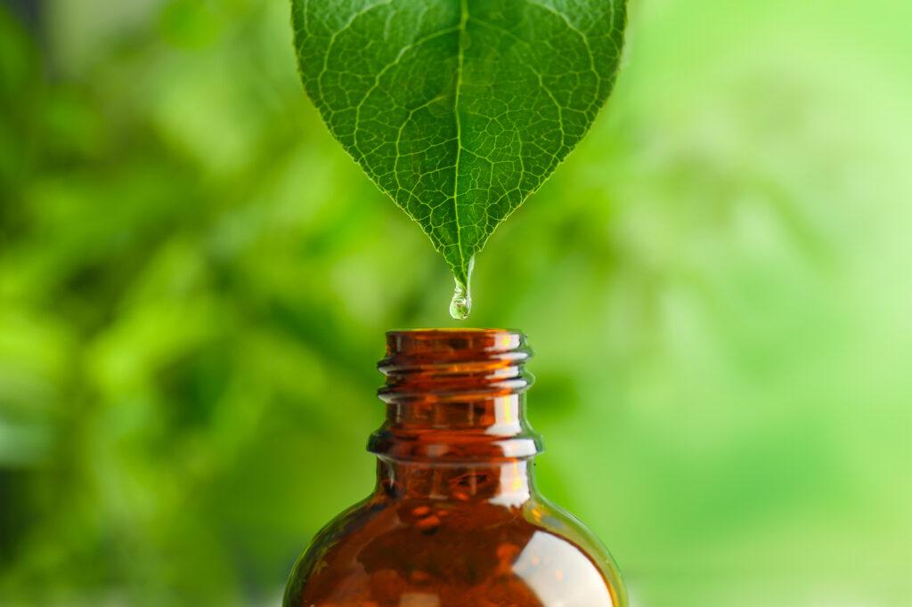 Pflanzenblatt mit Medizinflasche